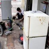 Vì sao gas R22 bị cấm dùng cho tủ lạnh